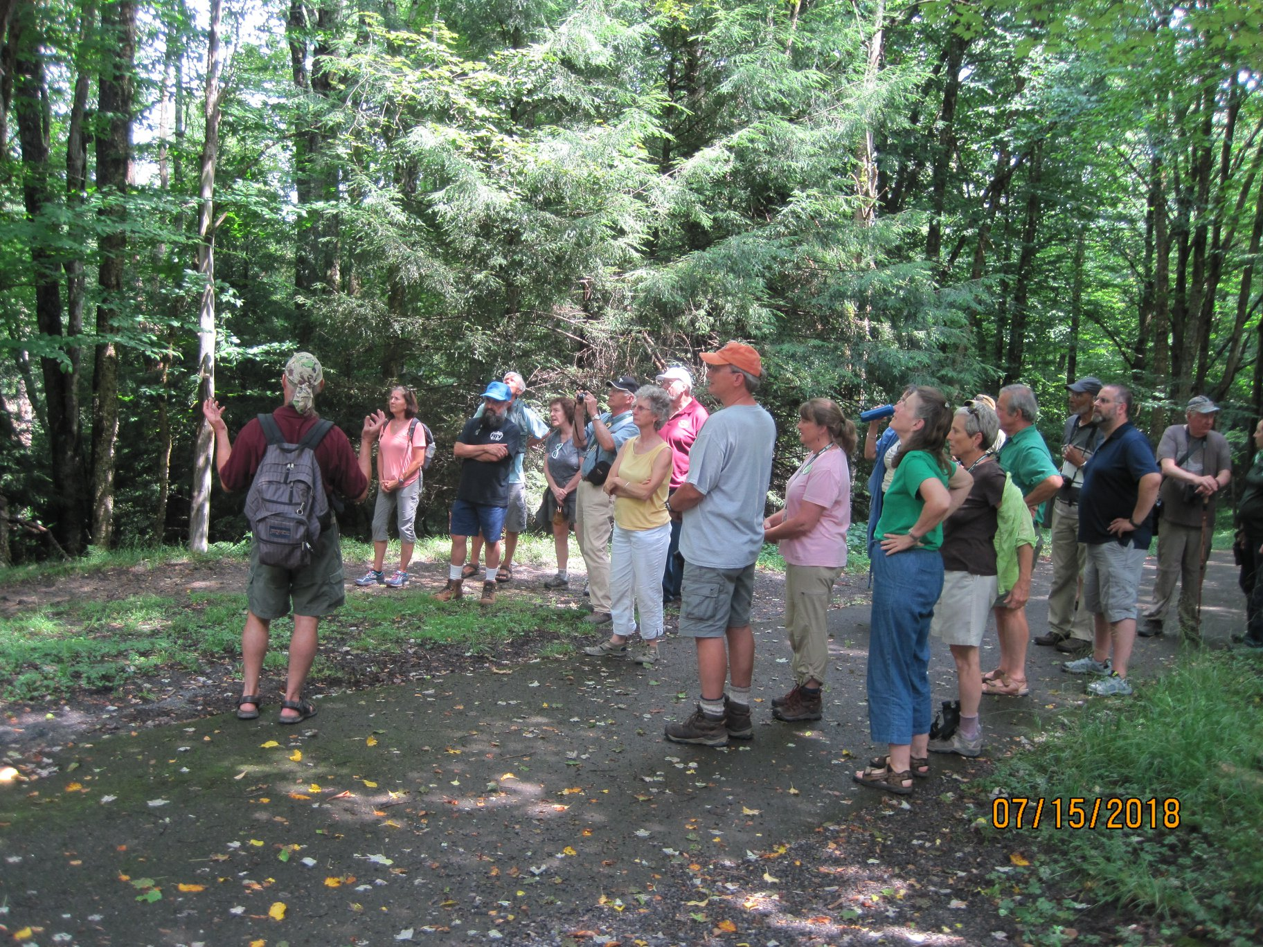 tour group learns about old growth forests