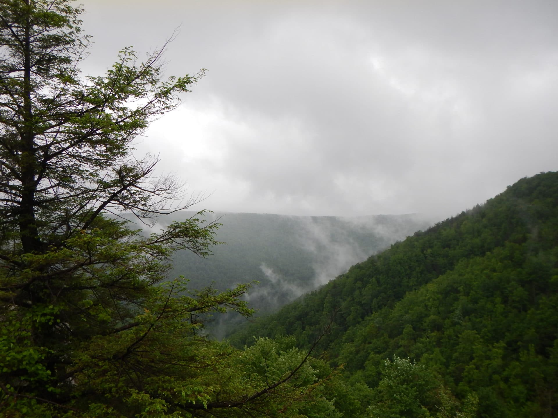 view from Big Run overlook