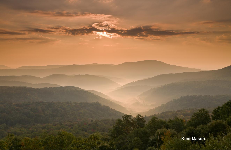 Kent Mason Mon Forest image