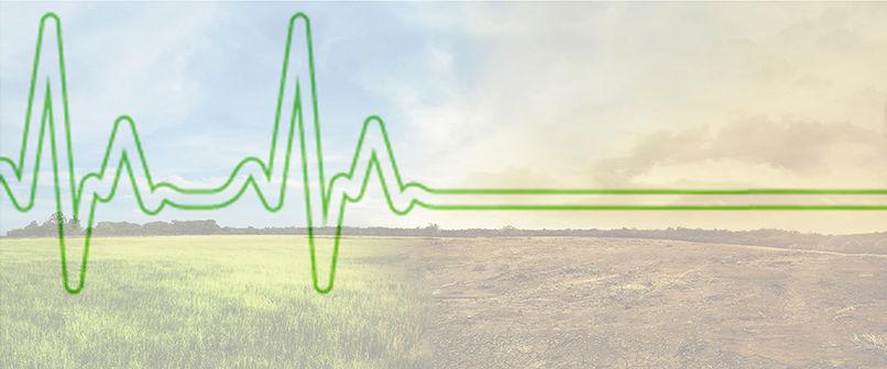 environment heart beat