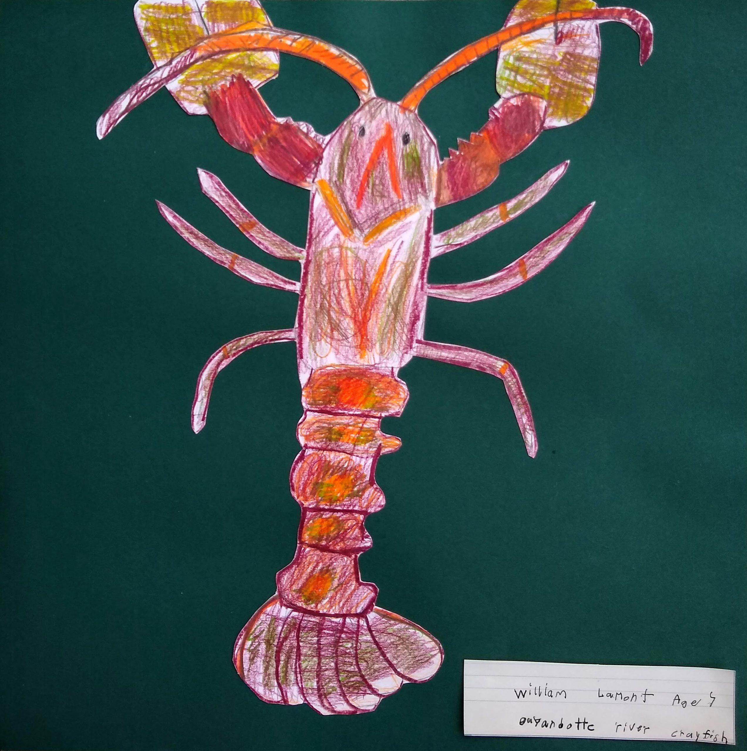 WilliamLamont_GuyandotteRiverCrayfish