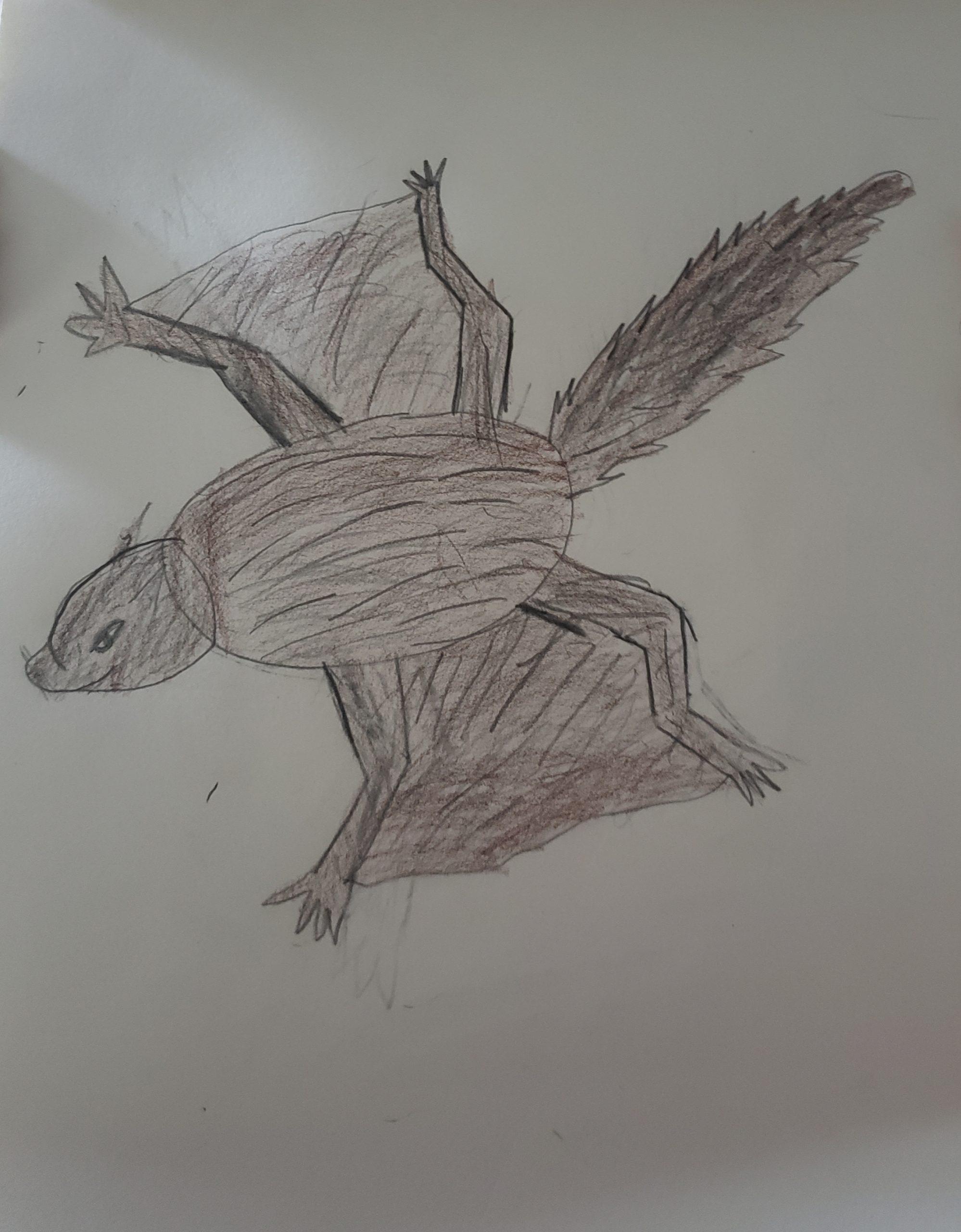 flying squirrel 8