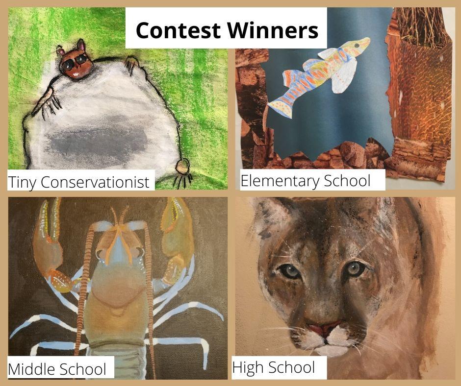 esa contest winners (1)