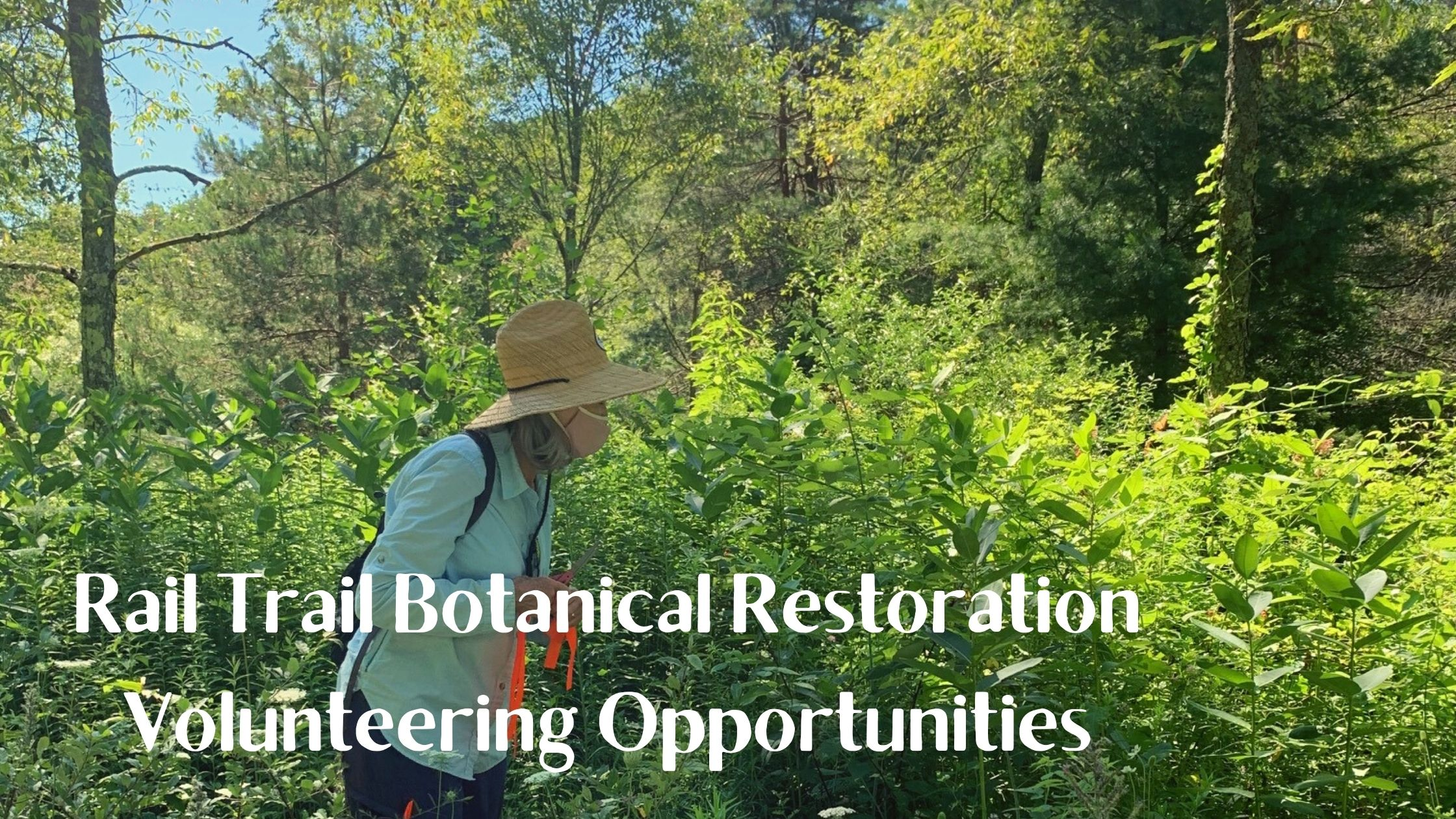 Rail Trail Botanical Restoration