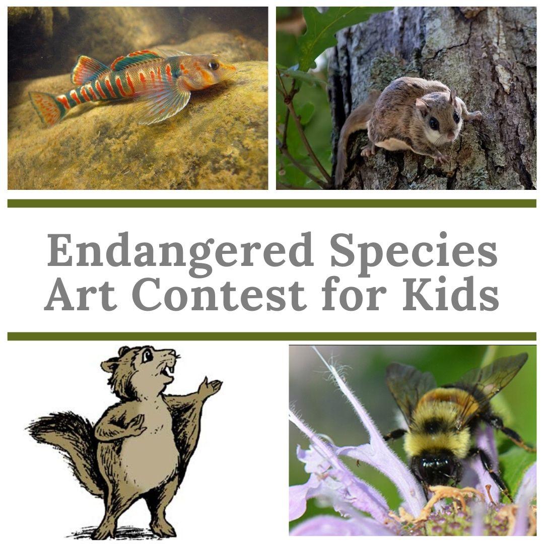 Endangered Species Art Contest Insta(2)